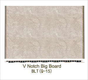 V noth big board BLT(Q-15)