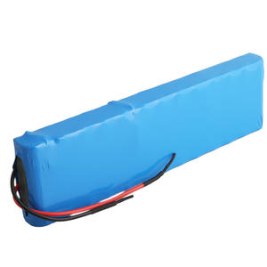 48V 2900mAh High Capacity Lithium ion Battery Packs For Vacuum Cleaner