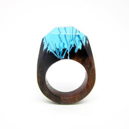 2017 epoxy jewelry resin, epoxy resin Landscape,secret resin ring(secret wooden ring)