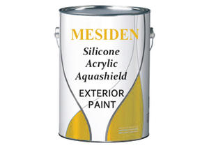 Exterior Emulsion Wall Paint - E4