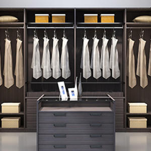 custom walk-in closet design
