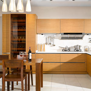 TV-400 Bavaria Series Contemporary Kitchen Cabinet