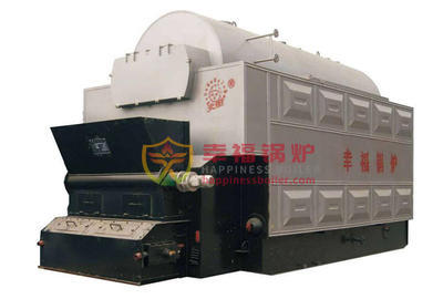 Feed coal fired industrial steam boilers