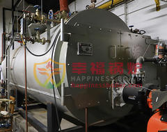 WNS series gas fired boiler oil steam boiler