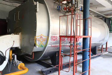 WNS series condensing steam boiler
