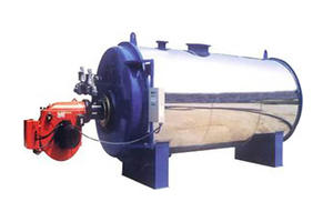 CWNS Series Coal Burning Boiler