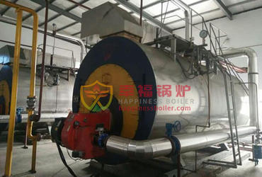 WNS series coal fired furnace