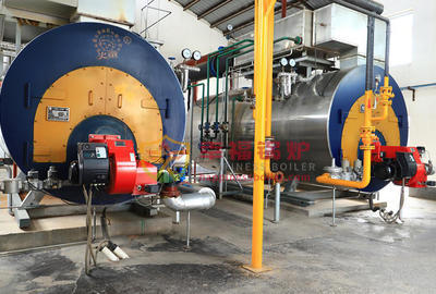 Xingyang City 602 group WNS steam boilers