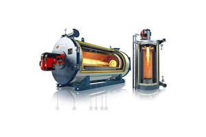 China Thermal steam boiler manufacturers