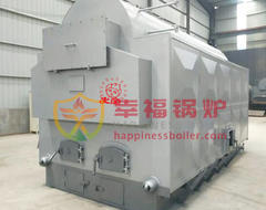 DHL series biomass hot water boiler