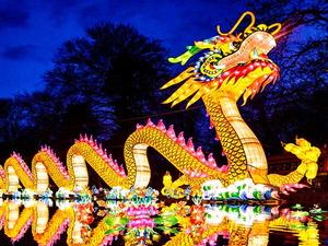 Chinese dragon lantern decorated for events