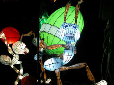 festival lamp-sculpture lantern-Ants moving house