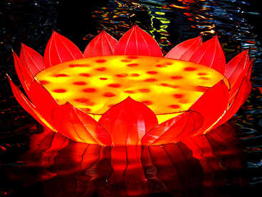 chinese new year lantern craft-lotus