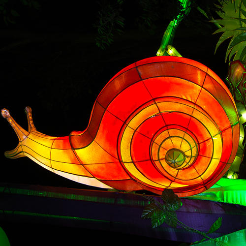 festival lamp- insect- snail