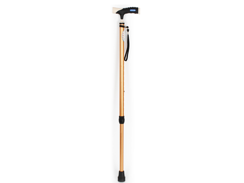 Walking stick series AGST001A