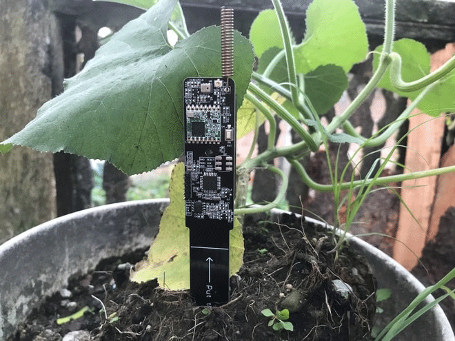 LoRa-Based-IoT-Smart-Agriculture