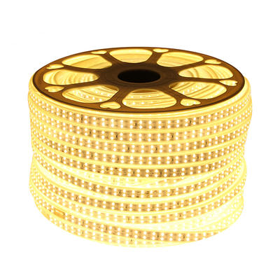 High Brightness Waterproof RGB SMD 5050 2835 Flexible LED Light Strip