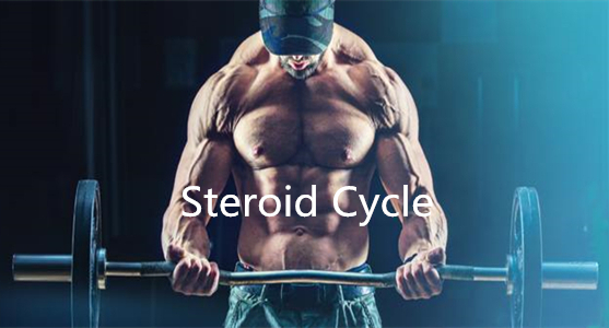 Build Your Own Steroid Cycle