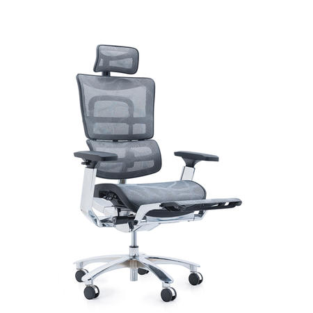 JNS-809L ergohuman chair
