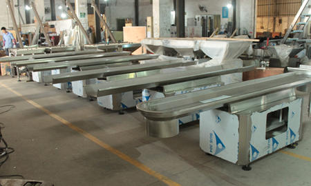 Customized Fastback Motion Conveyor Manufacturer