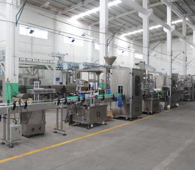 Inspection Of Automatic Packing Machine