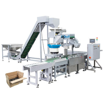 High Capacity Fastener Packing Machine Supplier-Large Weight Carton Packaging System