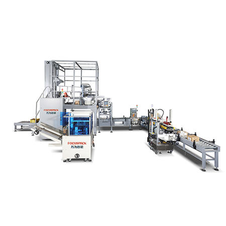 High Capacity 15kg Fastener Packing System Manufacturer-Large Weight Carton Packaging System