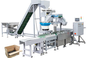 25kg Carton Packaging System for Screws, Nails, Nuts, Bolts