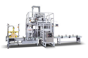 30kg Long Nails Automatic Cartonning and Paralleling System