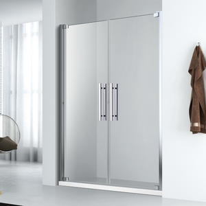 FE124  Saloon shower door