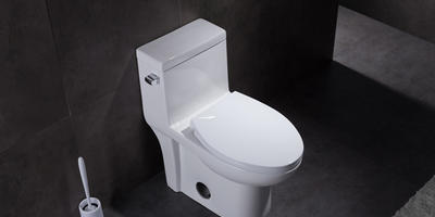 Is one piece eco toilet better? Where is the price difference?