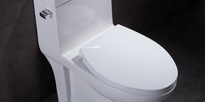 Why choose the elongated toilet design