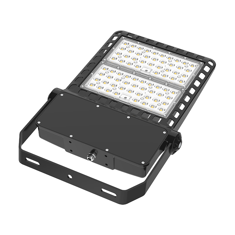FL21 LED Flood Light