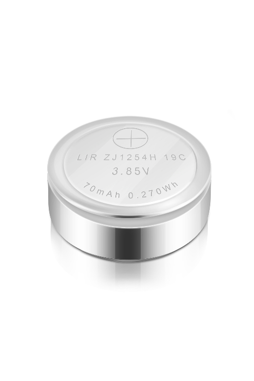1254H Coin Battery