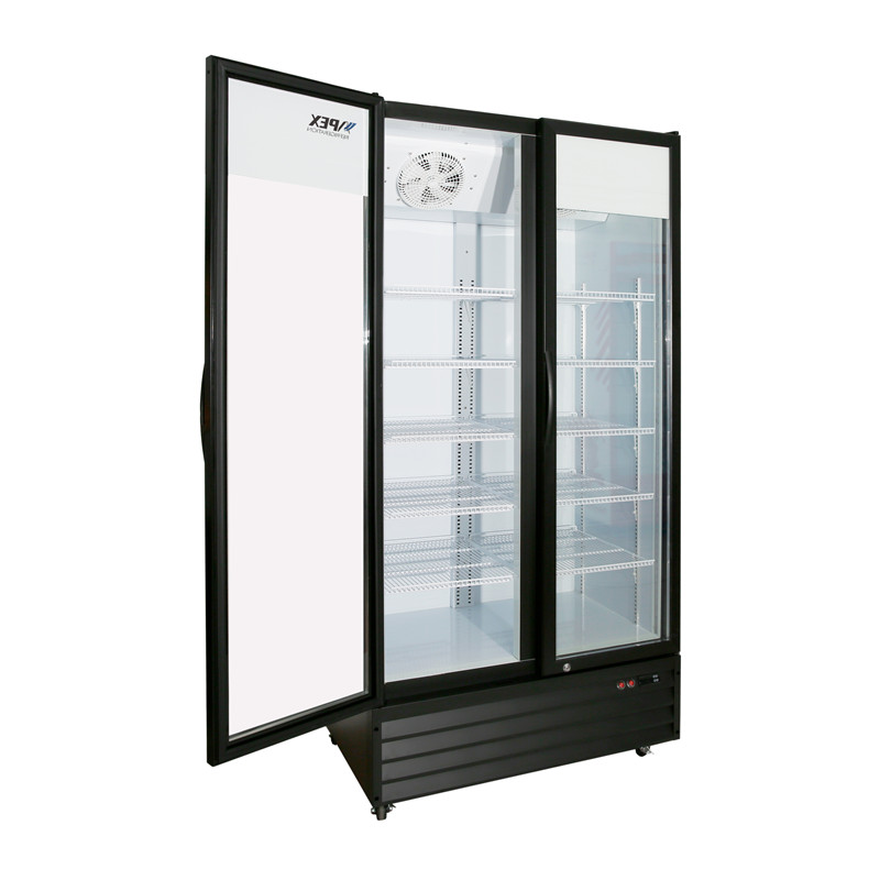 Double Hinge Door Upright Double Door Refrigerator