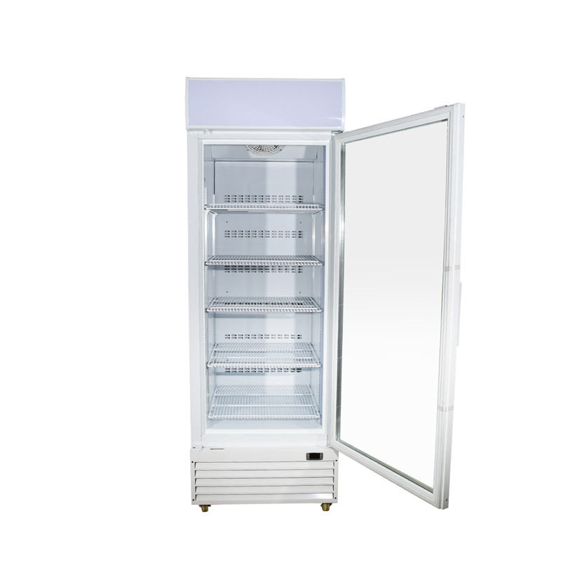Single Door Freezer Merchandiser