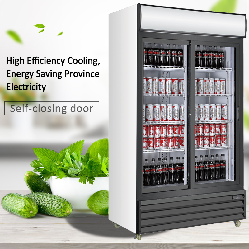 Double Sliding Door Upright Cooler