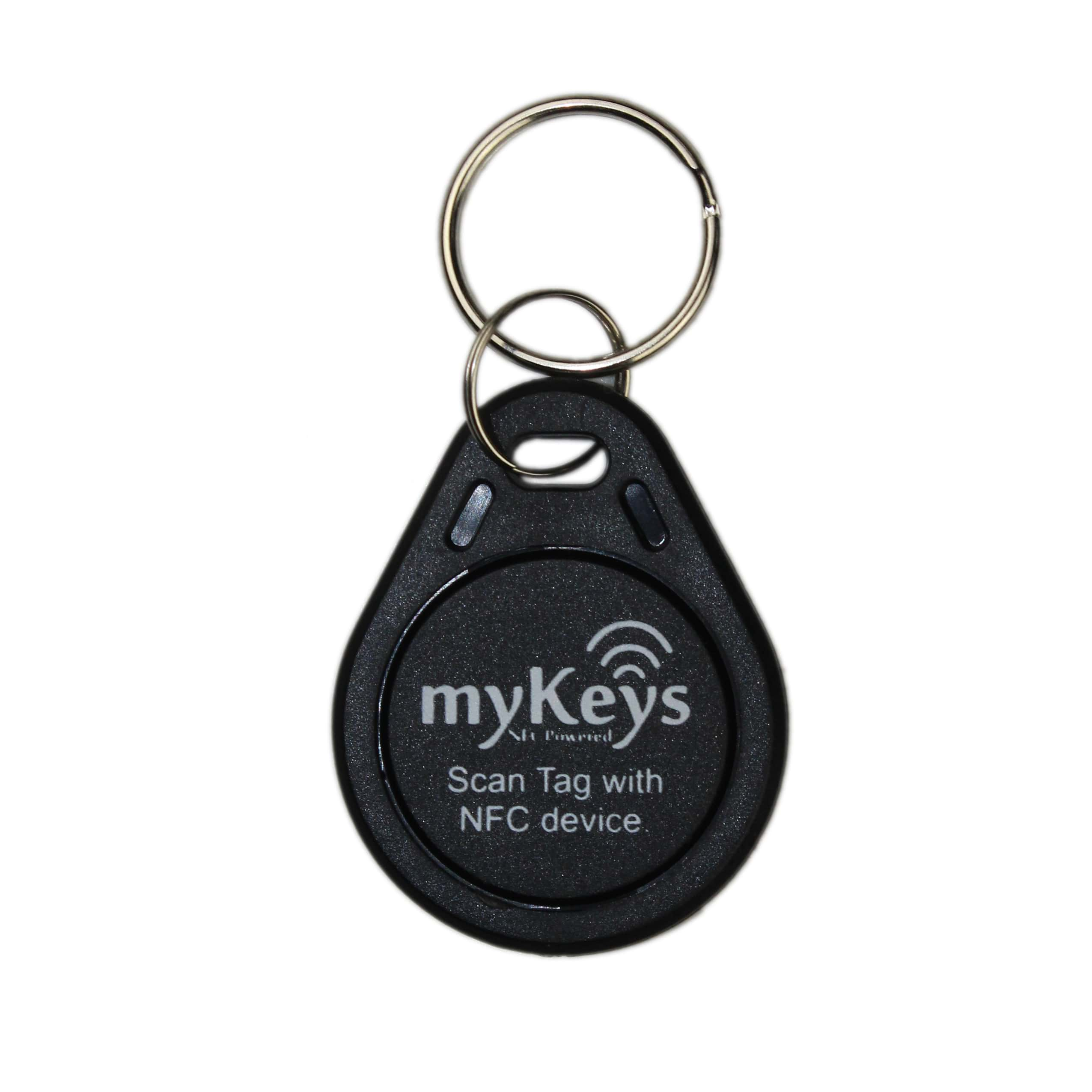 125KHz RFID Keyfob丨Attractive in Price and Quality –XINYETONG