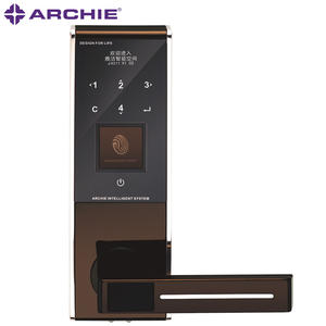 Smart Fingerprint Door Lock  J4011-01