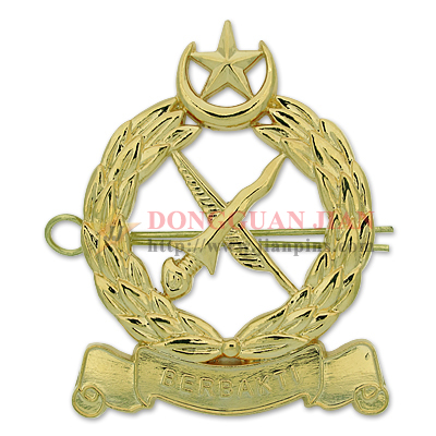 Sword Gold Military Pins Badges Collections