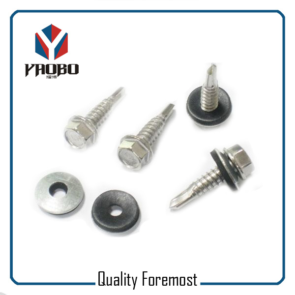 Supplier Iron Screw Fasteners
