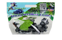 USA Black Seedless Table Bag of Grapes