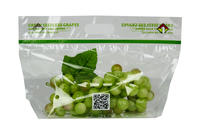 Green Seedless Grapes Vented Zipper Bag