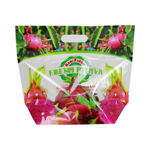 Custom Printed Laminated Pitaya Packaging Bag
